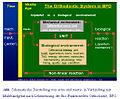Actio und reactio in Verbindung mit Multibandgerät nach Lehrmeinung BFO.jpg