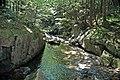 Adams Brook (near East Dover, Green Mountains, Vermont, USA) 9.jpg