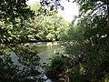 Afon Dyfrdwy near Rhydonnen - geograph.org.uk - 237133.jpg