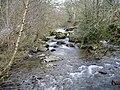 Afon Hirnant at Rhos-y-Gwalia - geograph.org.uk - 139757.jpg