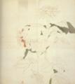Aimitsu-1941-Dahlias.png