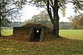 Air Raid Shelter at Upper Gatton Park - geograph.org.uk - 1563663.jpg