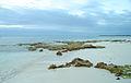 Akumal Beach - Mexico (4303204764).jpg