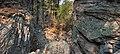 Alexander Canyon - Flickr - aspidoscelis (6).jpg