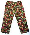 Alpenflage pants - front (14439007577).jpg
