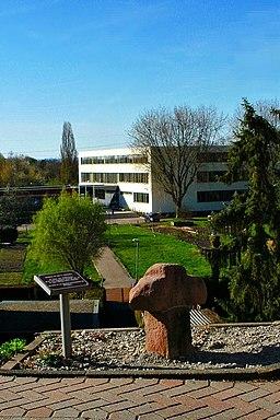 Am Stiegelberg in Durmersheim