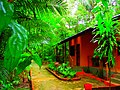 Amazon rainforest jungle resort - panoramio.jpg