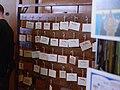 Ambiances - Mang'Azur 2014 - P1820646.jpg