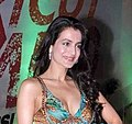 Ameesha Patel's birthday bash.jpg