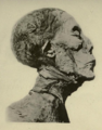 Amenhotep II mummy Carter 2.png