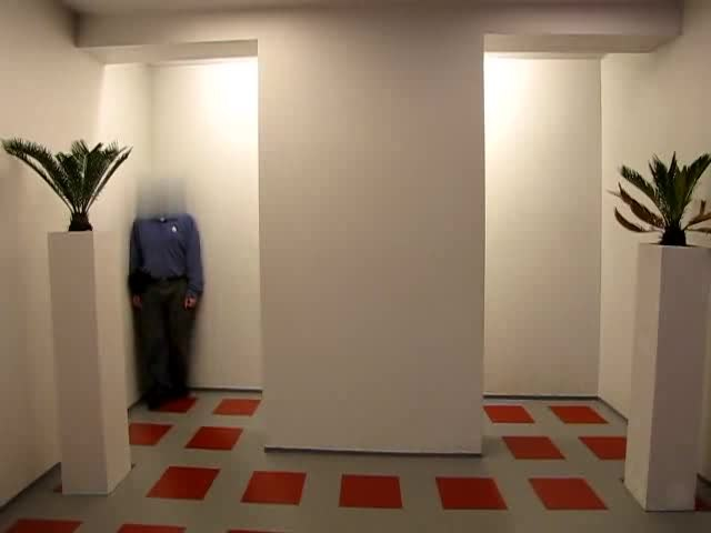 Ames Room Wiktionary