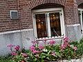 Amsterdam (3400783144).jpg