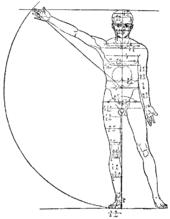 Kanon (sztuka) – Wikipedia, wolna encyklopedia