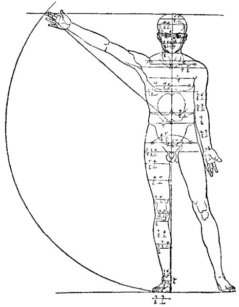 466px-Anatomical_and_geometrical_proportions_-_Albrecht_D%C3%BCrer.png