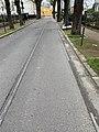 Anciens Rails Tramway St Germain Prés Avenue Verdun - Fontenay-aux-Roses (FR92) - 2021-01-03 - 1.jpg