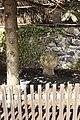 Andělská Hora smírčí kříž 3.jpg