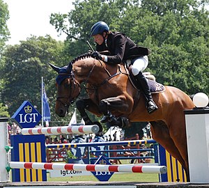 English: German rider Andreas Kreuzer with the...