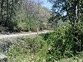 Annamalai Tiger Reserve - panoramio.jpg