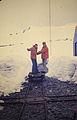 Antártida. Década de 1970. 17.jpg