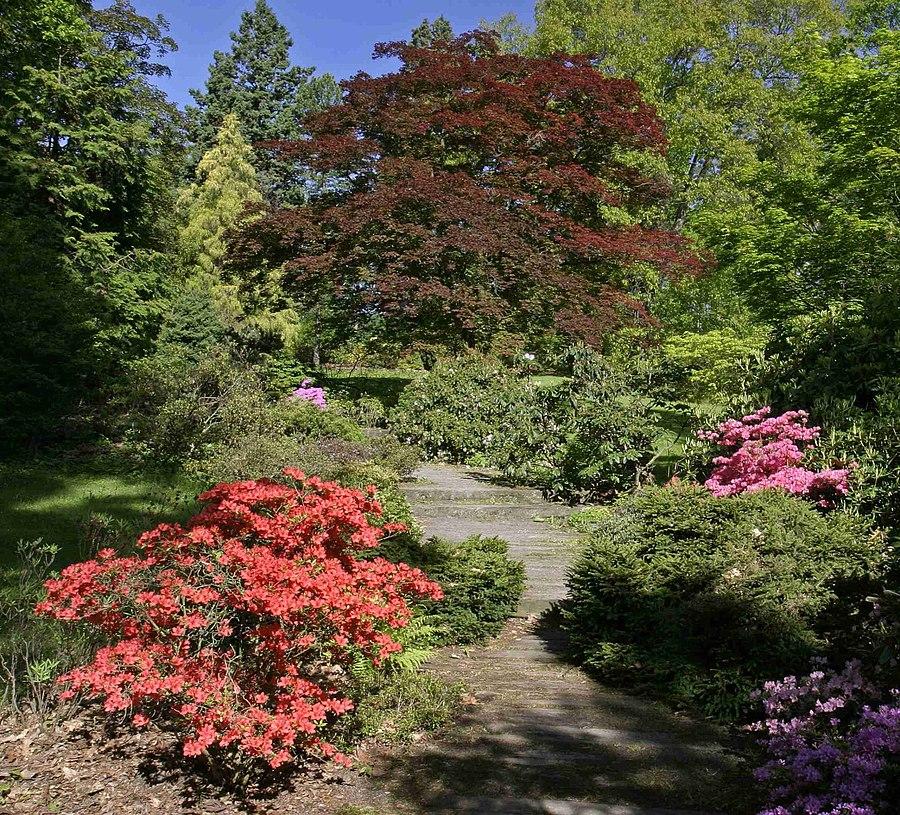 Nový Dvůr Arboretum