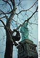 Arborist pruning Statue of Liberty.jpg