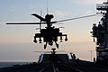 Army Apache Helicopter Practices Deck Landing Operations with the Royal Navy MOD 45152982.jpg