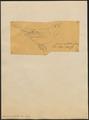 Arremon spectabilis - 1854 - Print - Iconographia Zoologica - Special Collections University of Amsterdam - UBA01 IZ15900365.tif