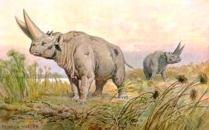 Jebel Qatrani Formation - Heinrich Harder's reconstruction of Arsinoitherium zitteli in the Oligocene grassland of Jebel Qatrani escarpment.