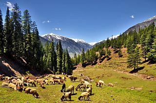 Utror Place in Khyber Pakhtunkhwa, Pakistan