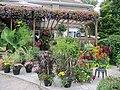 Autumn patio planters (6163939627).jpg