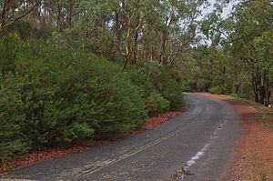 Toodyay Road - Remnant section of an earlier alignment near Noble Falls