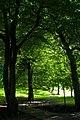 Backhouse Park - panoramio - somaliayaswan (6).jpg