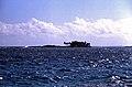 Bahamas 1989 (468) Abaco Parrots Cays (24823584872).jpg