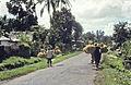 Bali1981-003.jpg