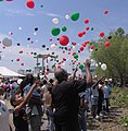 Balloons are released at the annual Mary Meachum Freedom Crossing celebration in St. Louis. Photo by Lynn DeLearie.jpg