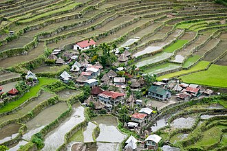 Ifugao - A village in the Batad rice terraces