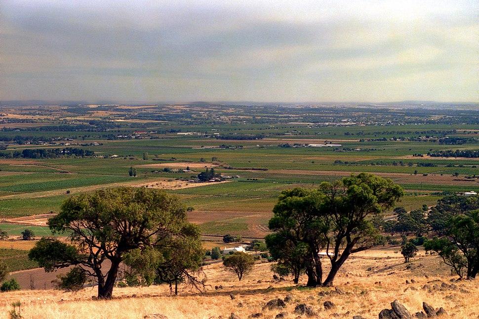Barossa Valley 2