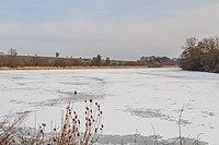 Bartoušovský rybník na říčce Mrlina 02.jpg