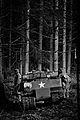 Bastogne Historic Walk 2011 (6545703085).jpg