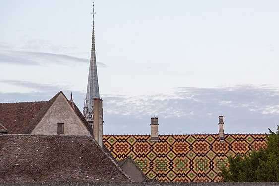 Beaune Rooftop.jpg