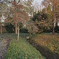 Beeïndiging Perenallee - Frederiksoord - 20382158 - RCE.jpg
