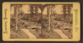 Belmont Dell, Fairmount Park, from Robert N. Dennis collection of stereoscopic views.png