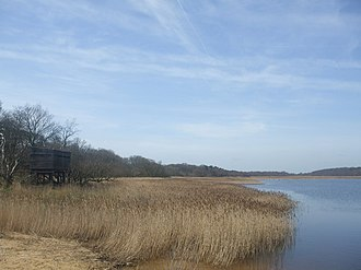 Benacre National Nature Reserve - Benacre Broad