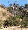 Bench, Oakmont Park 6-16-13 (9120004678).jpg
