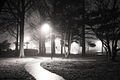 Bethalto arboretum at night.jpg