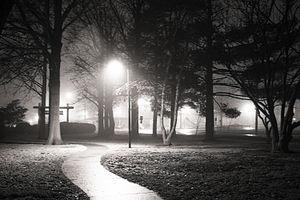 Bethalto, Illinois - Bethalto Arboretum at night