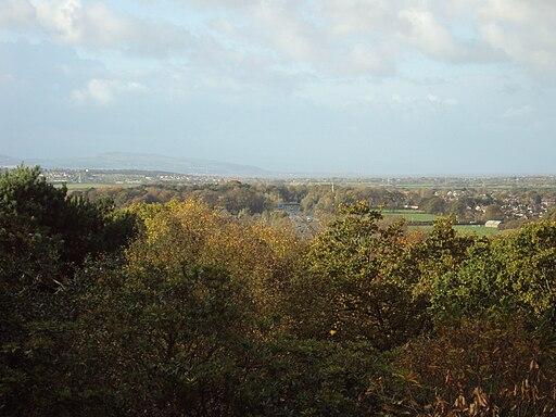 Bidston Hill - DSC04356