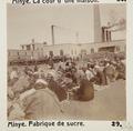 Bild från familjen von Hallwyls resa genom Egypten och Sudan, 5 november 1900 – 29 mars 1901 - Hallwylska museet - 91598.tif