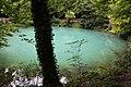 Blautopf 5166.jpg