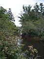 Bloomfield Provincial Park IMG 8142 (1849009776).jpg